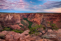 dawn, blue hour, Canyon De Chelly, Chinle, AZ, Arizona