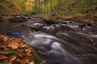 Kitchen Creek, waterfalls , hiking, hike, loop, Glen Leigh, Ganoga Glen, PA, Pennsylvania, Wilkes Barre