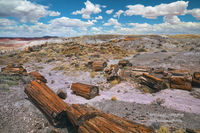 AZ, Arizona, Petrified Forest, Painted Desert, Holbrook, vistas, clouds, moon, black forest, vistas, national park, petrified wood