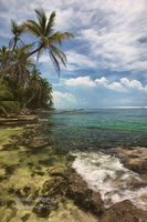 Caribbean, Cahuita National Park, Costa Rica, coral reef, hermit crabs, palm trees, coconuts, turquoise, Puerto Viejo, sea