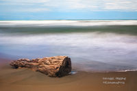 driftwood, sand, time lapse, surf, beach, Limon, Puerto Viejo, Caribbean Sea, Costa Rica