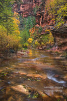 Call of the Canyon, fall, AZ, Arizona, Coconino National Forest, Sedona, West Fork Oak Creek Canyon