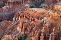 sandstone, hoodoos, Spectra Point, Cedar Breaks, National Monument, Brian Head, Southwestern, Utah, UT