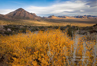 autumn, backcountry, frontier, Organ Mountains, Las Cruces, NM, New Mexico, Desert Peaks, National Monument, Tularosa Basin