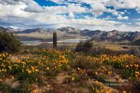 Bartlett Lake, winter, snow, Scottsdale, AZ, Arizona, clouds, storm, Tonto National Forest, desert