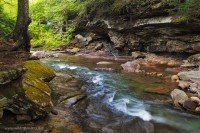 rock run, PA, Pennsylvania, waters, stream, loyalsock state forest