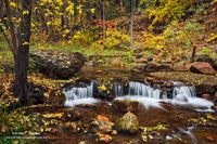 Tonto National Forest, autumn, Mogollon Rim, Arizona , AZ, Horton Creek, Payson, color