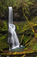 Trestle falls, OR, Oregon. mountains, rain, spring, gem, rain, Umpqua National Forest