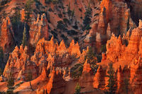 Bryce Canyon National Park, Utah, hoodoos, Garfield County, UT