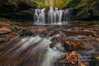 Ricketts Glen State Park, Pennsylvania, hike, old growth, Ganoga falls, luzerne, sullivan, columbia, PA, scenic, Glens Natural Area