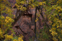 Veil of Stone