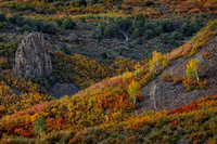 autumn, harvest, night, owl creek pass, scrub oak, aspen, trees, beautiful, uncompahgre national forest, colorado
