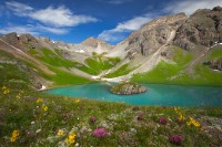 Island Lake, Colorado, CO, wildflower, Theodore Roosevelt Peak