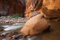 glow, rock, utah, ut, zion national park, virgin river, narrows, boulder, trees, colors