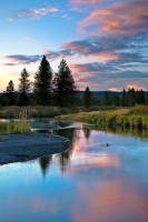 Boundary Creek, sunset, Yellowstone National Park, Wyoming, WY, douglar fir, meadows, water,