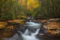 autumn, Rowland Creek, Bryson City, NC, North Carolina, Great Smoky Mountains, Road to Nowhere