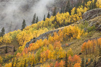 San Juan National Forest, Colorado, peak, fall, colors, mountains, autumn, Silverton, CO