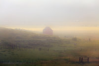 foggy, summer, Crede, mountain, rustic, barn, field, quiet, CO, Colorado Rio Grande National Forest