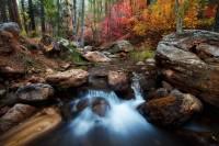 Tonto National Forest, AZ, Horton Springs, Fall