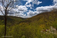view, loyalsock state forest, loyalsock trail, PA, Pennsylvania, Kettle Creek, spring