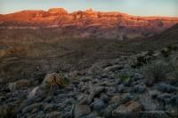 marufo vega, split rock, sierra del carmen, big bend national park, sunset, texas, flowers,