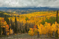 fall, Gunnison National Forest, CO, Colorado, Crested Butte, view, clouds, storm, colors, autumn