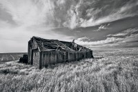 Palouse, grain, summer, landscape, wood, barn, Washington, WA, character, charm, run down, old, afternoon, barren,