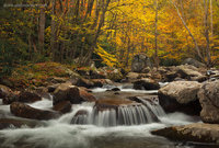 Big Creek trail, TN, NC, Great Smoky Mountains, North Carolina, rapids, autumn