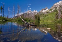 reflections, Grand Teton National Park, WY, Wyoming, craggy, snow capped, mountains, green, lush, vibrant, String Lake,