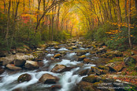 autumn, Great Smoky Mountains, Big Creek trail, Blue Ridge, Appalachian mountain, North Carolina, TN, NC