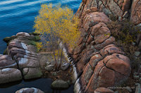 granite dells, Watson Lake, sunset, aspen tree, autumn, AZ, Prescott