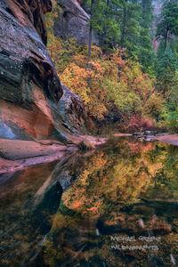 A Reflective Autumn