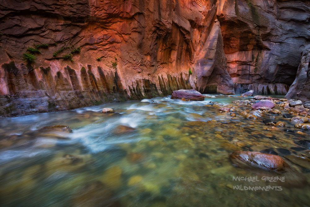Ambient mid-day light reflects off a chasm of rock deep in the heart of Zion's Narrows known as Wall Street. I used a higher...