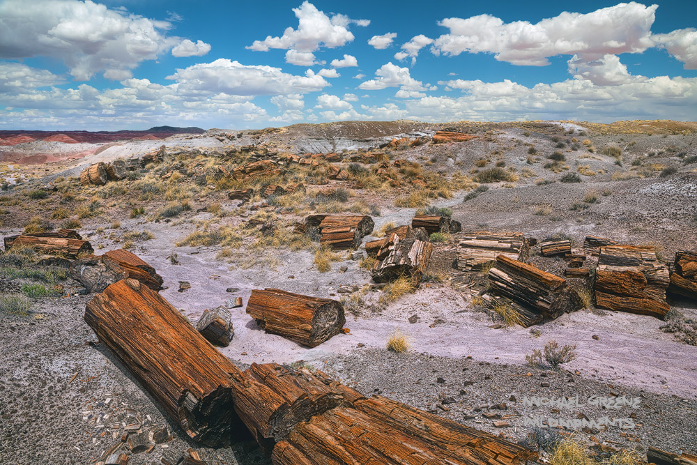 A plethora of petrified wood amid billowing vistas of the painted desert near Holbrook, Arizona.