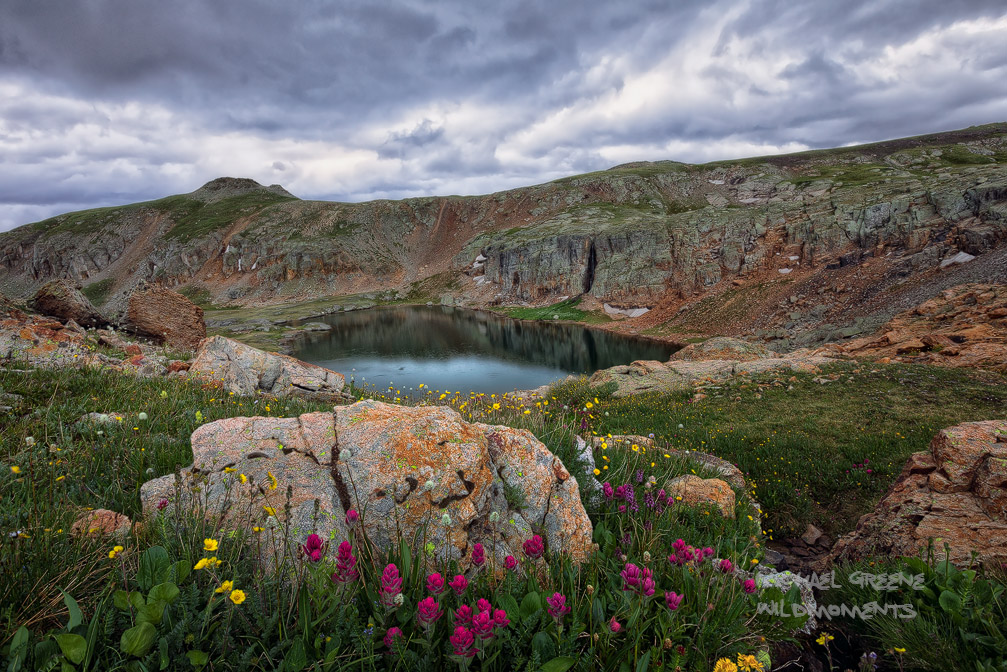Bullion King Lake, Porphyry, Red Mountain, wildflower, sneezeweed, indian paintbrush, bistort, evening, storm, summer, CO, San Juan National Forest , photo