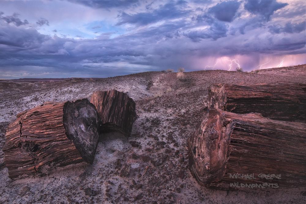 New Mexico, Holbrook, lightning, storm, Petrified Forest, national park, AZ, Arizona, backpacking, painted desert, photo