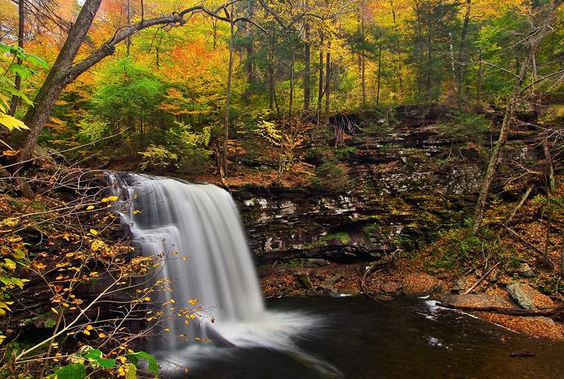 Pennsylvania, PA, Pennsylvania State Park, Ricketts Glen, Harrison Reynolds Fall, waterfalls, fall, foliage, stream, wat, photo
