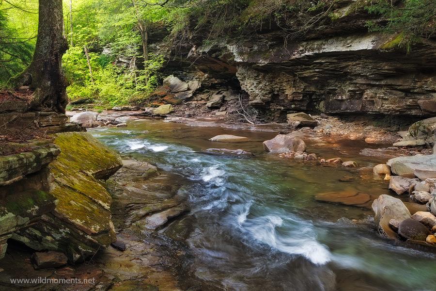 rock run, PA, Pennsylvania, waters, stream, loyalsock state forest, photo