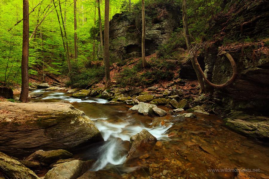 Lancaster, PA, Pennsylvania, pequea creek, gorge, beautiful, peaceful, photo