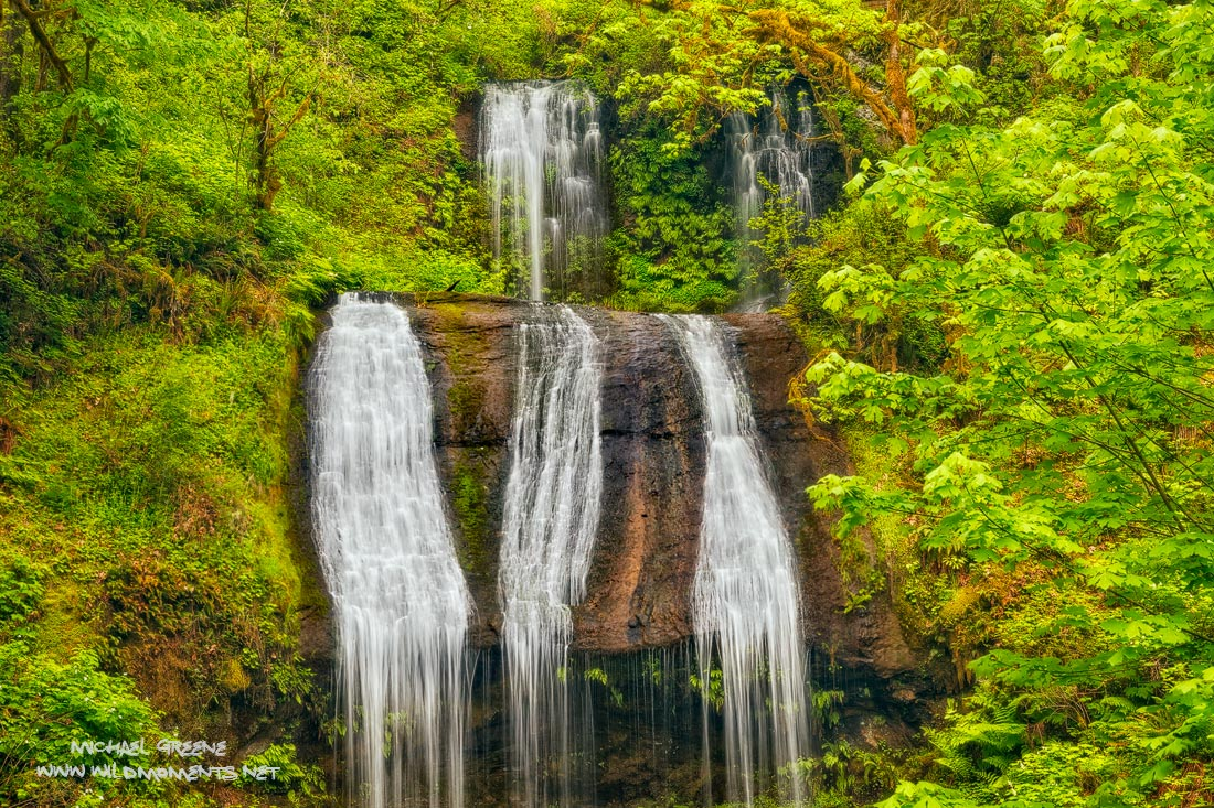 waterfall, Terrace Falls, McDowell Creek County Park, Oregon, Eugene, OR, photo