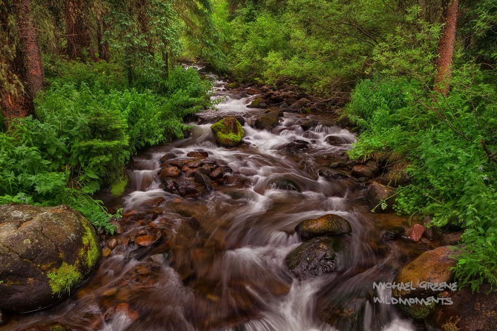 South San Juan Wilderness, creek, foliage,  CO , Colorado, photo