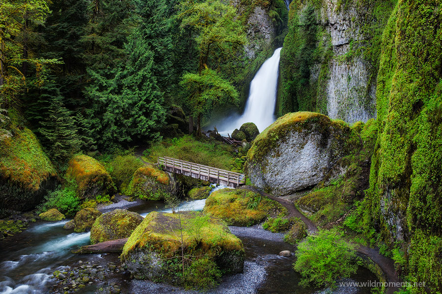 wahclella, waterfall, Columbia river gorge, Oregon, spring, greens, photo