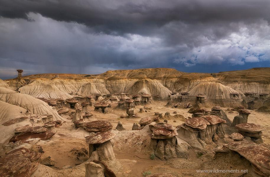 New Mexico, rain, San Juan Basin, clay, picture, photo