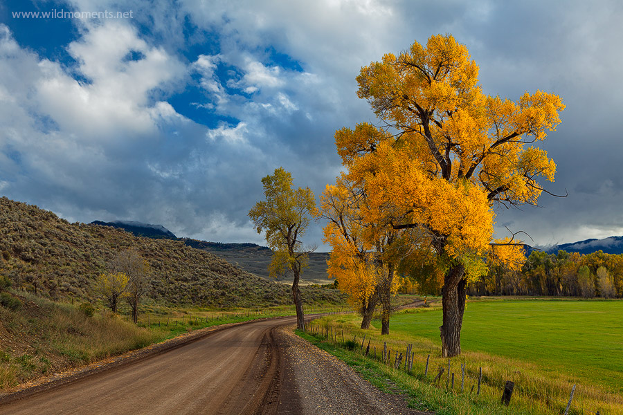 Uncompahgre National Forest, Colorado, CO, Cimarron, Colorado, autumn, storms, photo
