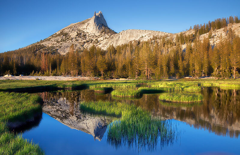 Yosemite National Park, CA, California, tarn, greens, Cathedral Peak, photo