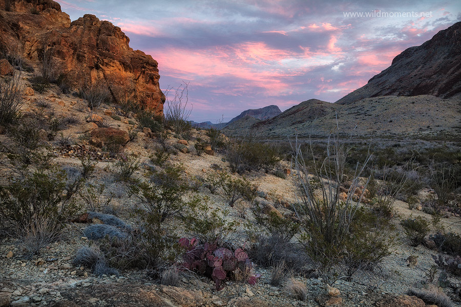 Chihuahuan Desert, big bend national park, texas, kit mountain, chimneys, sunset, photo