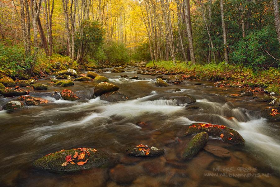 Bryson City, NC, North Carolina, Rowland Creek, autumn, photo