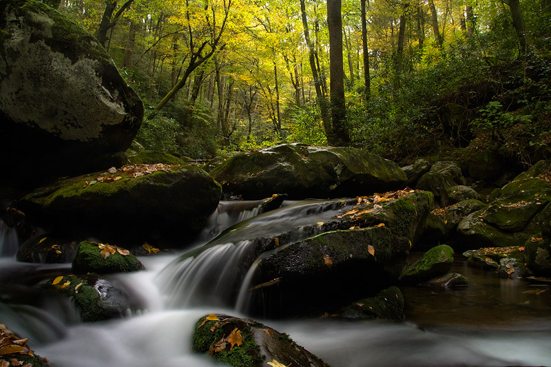 Great Smoky Mountain National Park, hiking, smooth water, Tennessee, TN, autumn, mossy, boulders, wind, rain, colorful, , photo