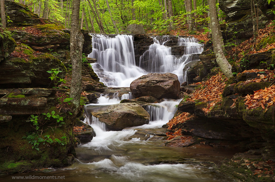 waterfalls, pa, loyalsock state forest, photo