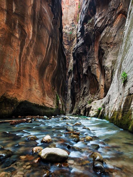 Zion National Park, UT, Utah, Virgin River, canyon, Wall Street, narrows, photo